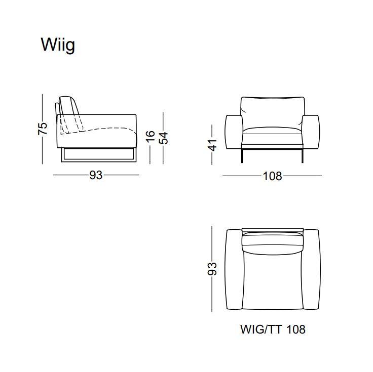 WIIG-1